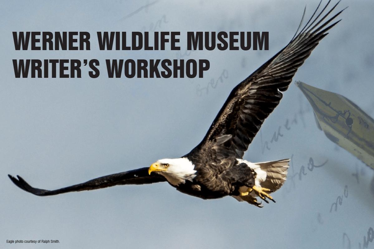 Image for the Werner Wildlife Writer's Workshop.