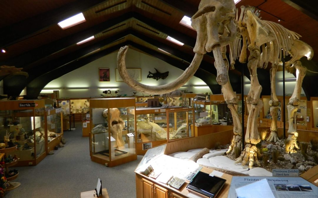 CC museums reopen following COVID-19 shutdown