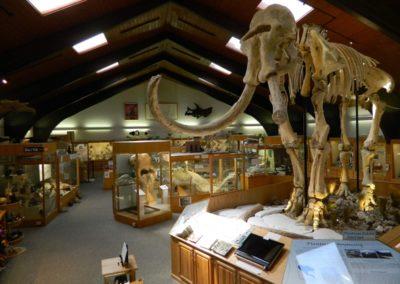 tate-museum-interior