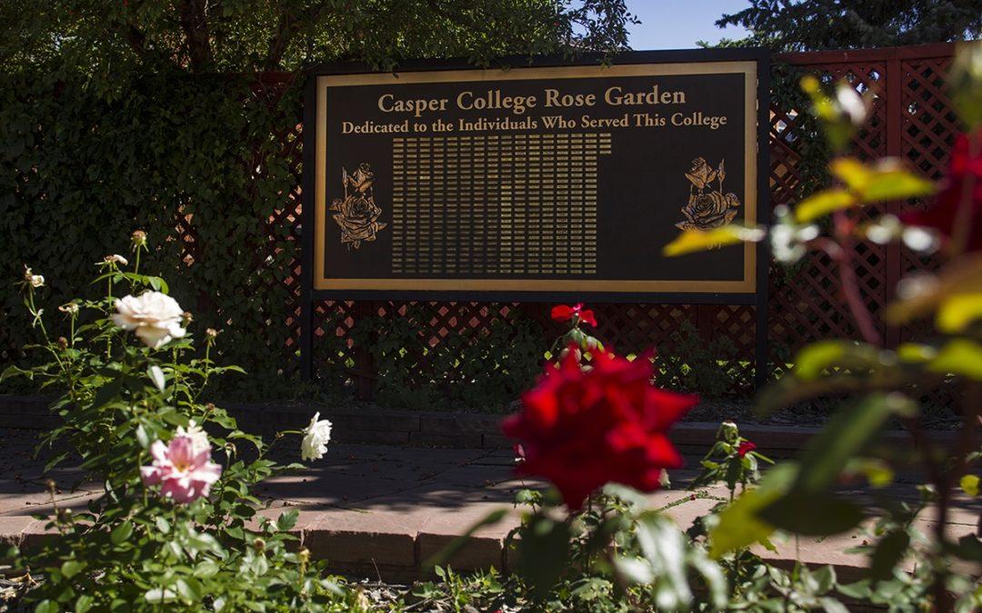 Hidden Campus: Rose Garden