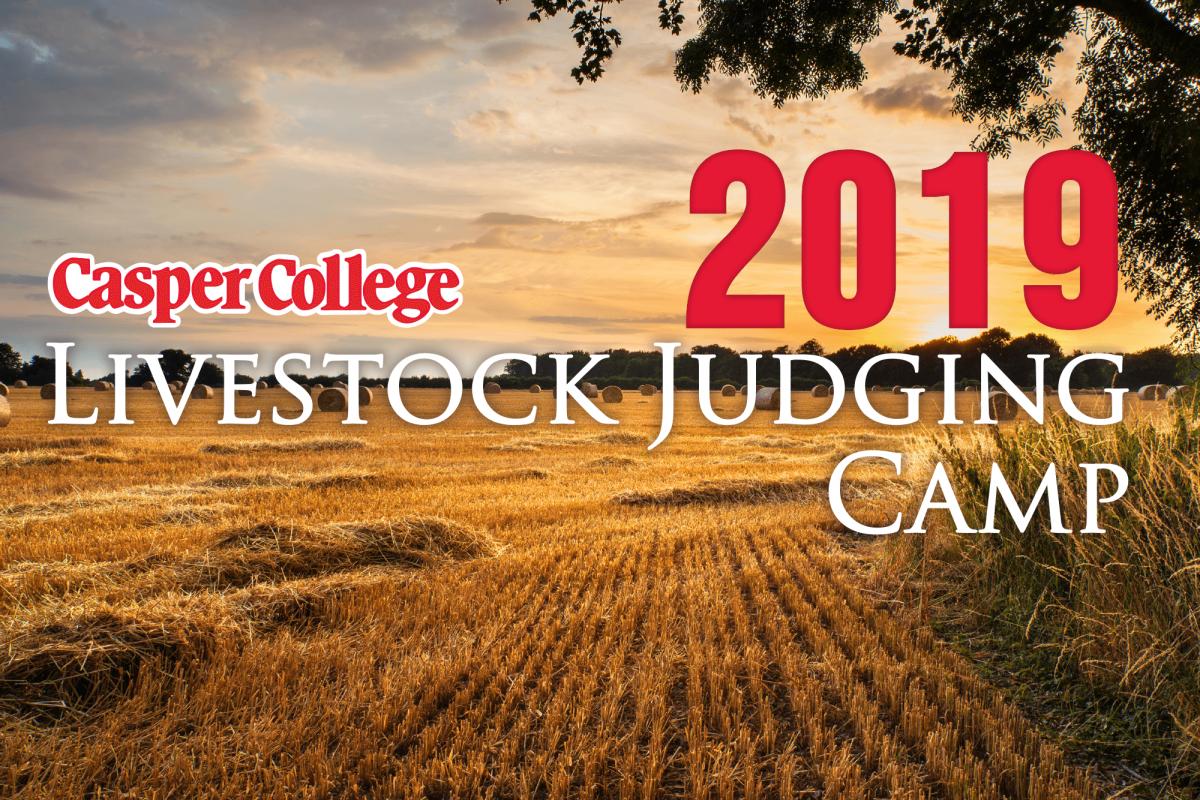 Image for Casper College Livestock Judging Camp press release.
