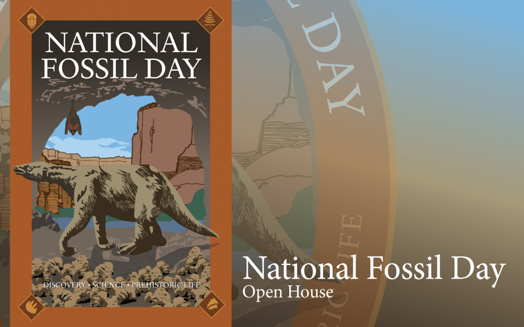 Fossil Day at Tate October 12