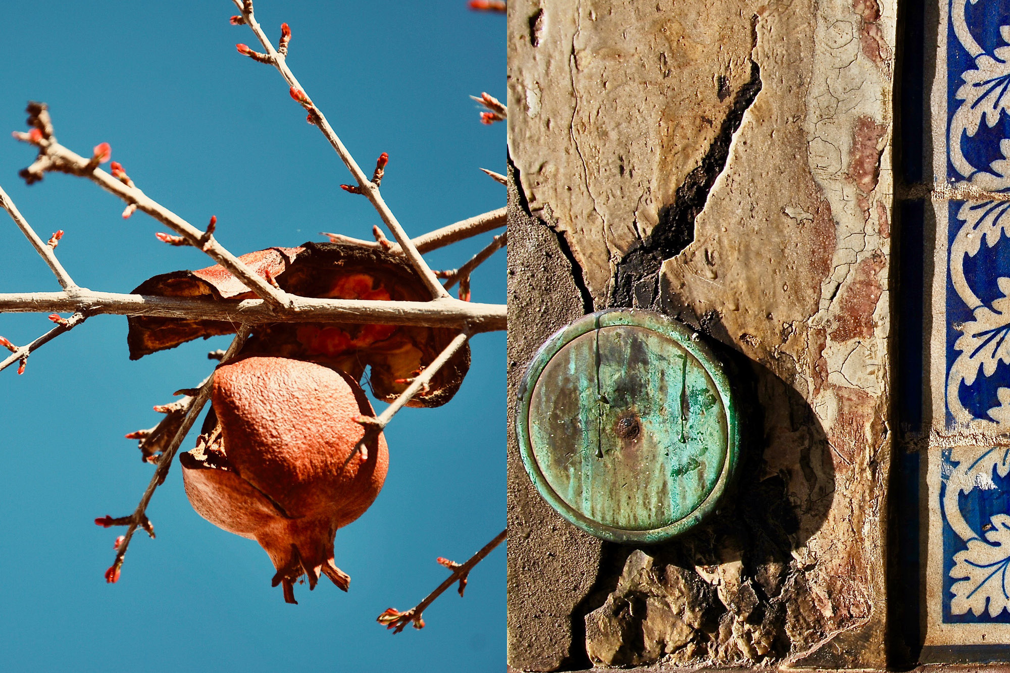Two photos one showing a dried seed on a branch of a tree and the other a piece of aged wood with a circle-shaped piece of wood nailed on top of the board.