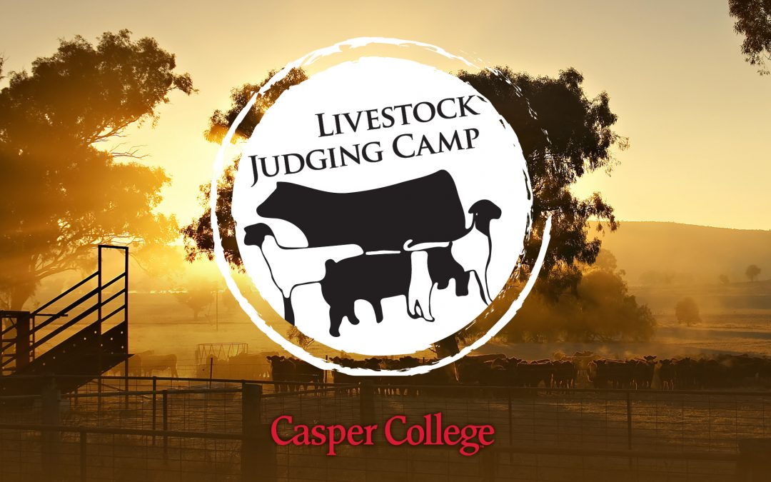 Casper College Livestock Judging Camp June 22-24