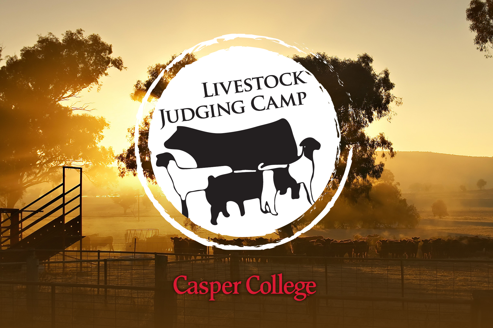 Image of the logo for the Casper College Livestock Judging Camp.