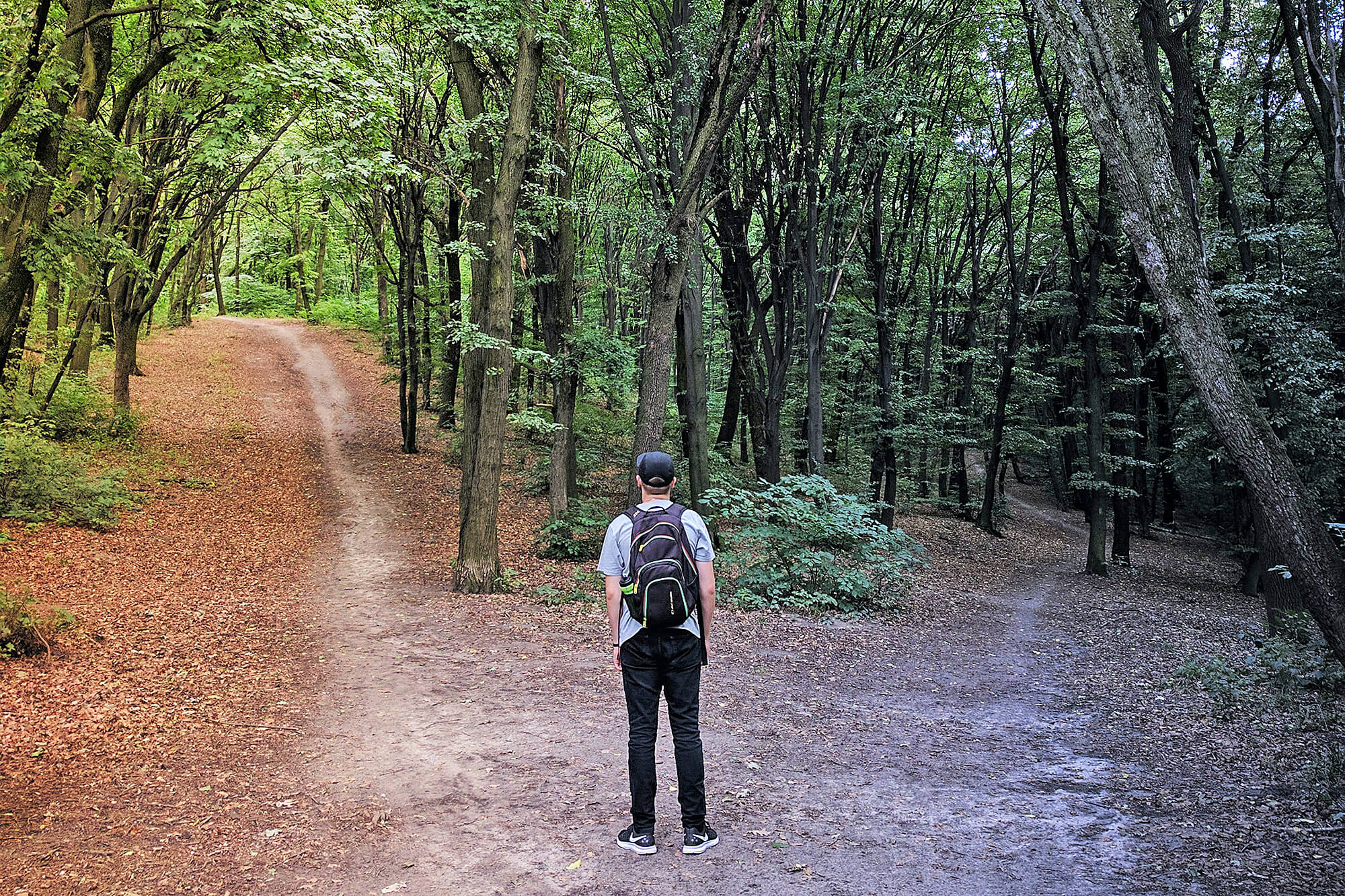 Man looking at two paths in the woods.