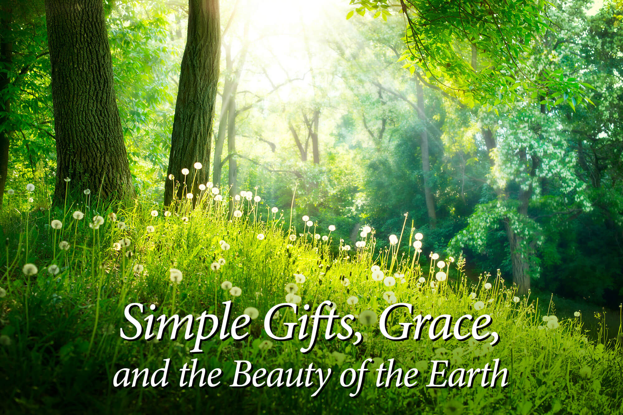 """Photograph of trees and grass with the words """"Simple Gifts, Grace, and the Beauty of the Earth."""""""