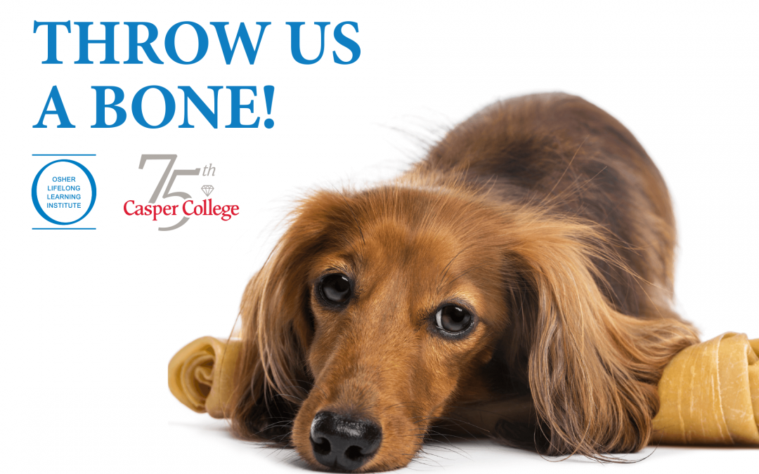 OLLI 'Throw Us a Bone' encourages giving