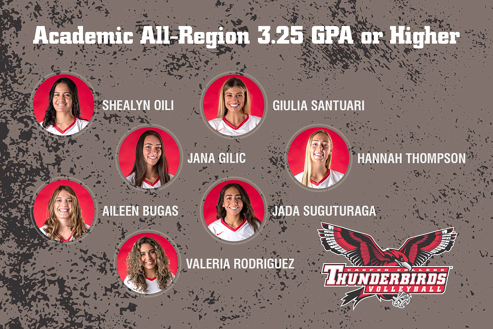 Image for volleyball academic honors release.