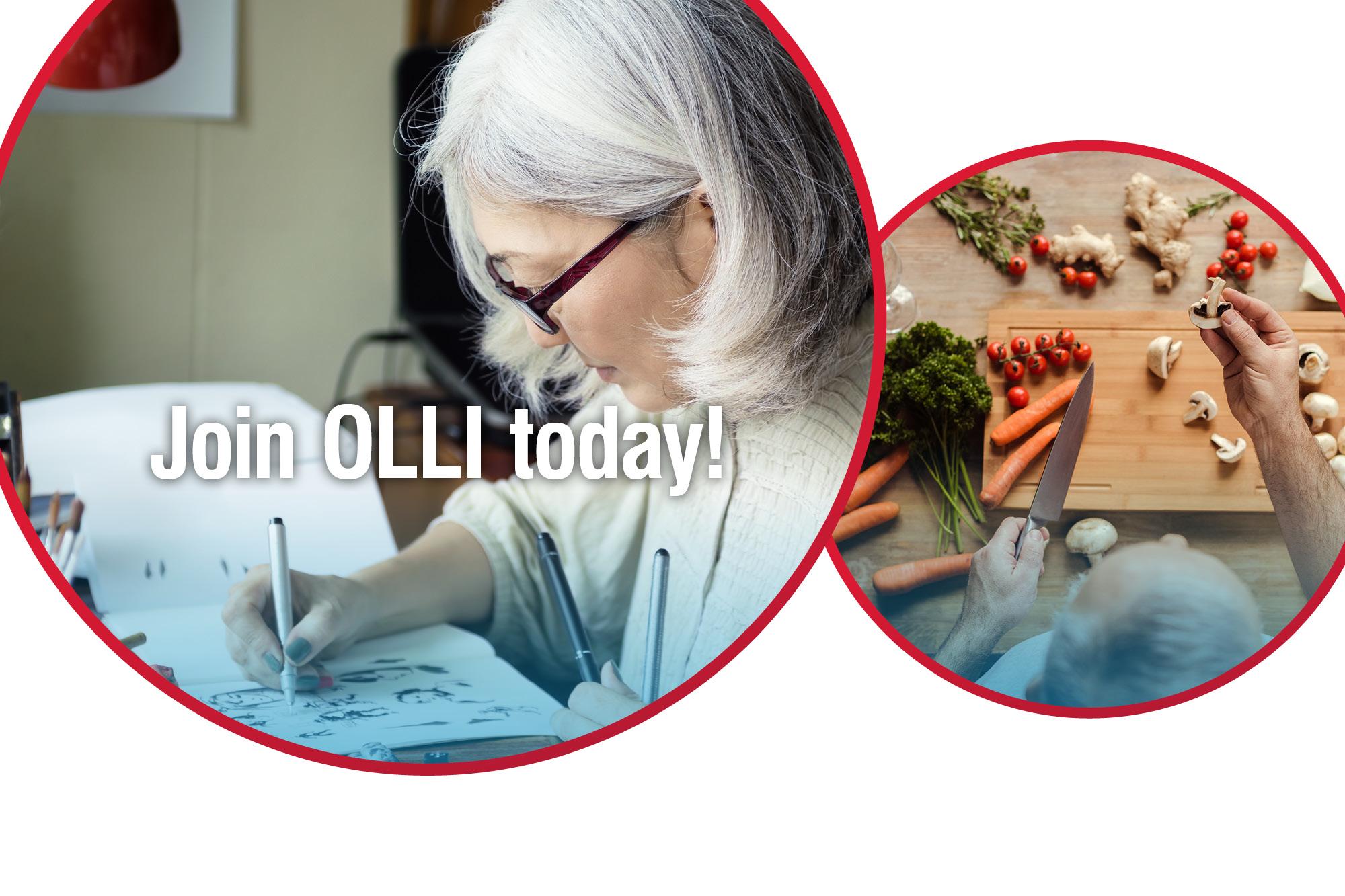 Image for OLLI registration story.